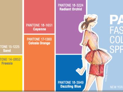 Купальники 2014: трендовые цвета